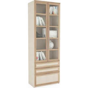 Шкаф 2-дверный с ящиками ВасКо Соло 054-3305