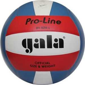Волейбольный мяч Gala PRO-LINE, натур. кожа (арт. BV5211L)