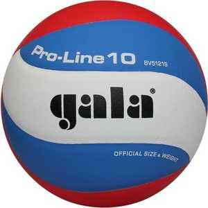 Мяч волейбольный Gala Pro-Line (BV5121S) korting ogg 1052 crn