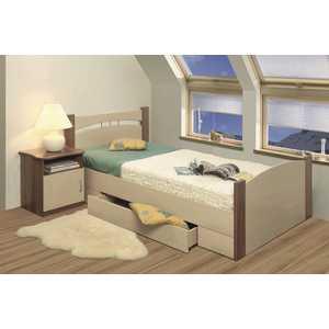 Кровать ОЛМЕКО 120х200 ясень шимо темный/дуб линдберг