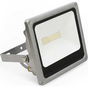 Светодиодный прожектор Estares DL-NS25 AC170-265V 48 LED 25 W IP65 Холодный белый