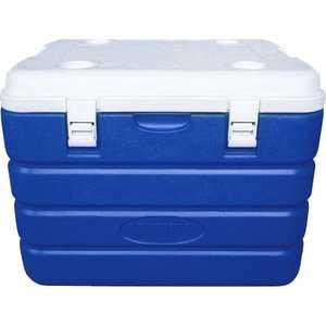 Изотермический контейнер 60 л Арктика синий (2000-60) rev ritter 32390 7