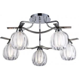 Люстра N-light 406-05-13 406
