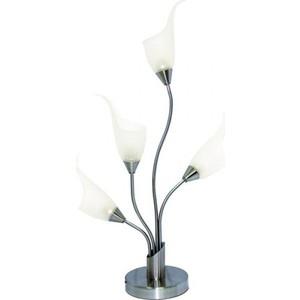 все цены на  Настольная лампа N-light TX-0143/4 satin chrome  в интернете