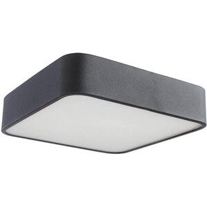 Потолочный светильник Artelamp A7210PL-2BK artelamp a7210pl 4cc