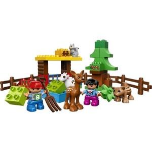 Конструктор Lego Лесные животные (10582)