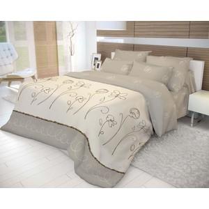 Комплект постельного белья Евро Волшебная ночь Фиалка Монмартра с наволочками 70x70 (183819)
