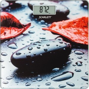 Весы Scarlett SC-BS33E052