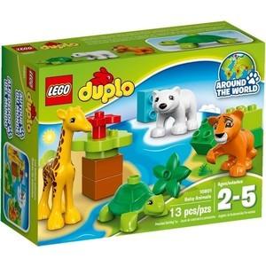 Конструктор Lego Вокруг света: малыши (10801)
