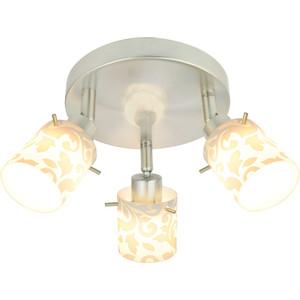 Спот Silver Light Orchid 304.35.3 спот silverlight orchid 304 45 1