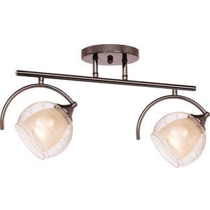 Потолочная люстра Silver Light Sfera 255.59.2 excellent sfera 170x100 l