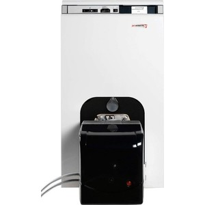 Напольный газово/жидкотопливный котел PROTHERM Бизон 30 NL стоимость