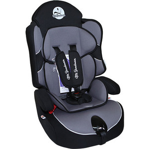 Автокресло Mr Sandman Little Passenger Isofix 9-36 кг Черный/Серый (AMSLPI-0525KRES1037)