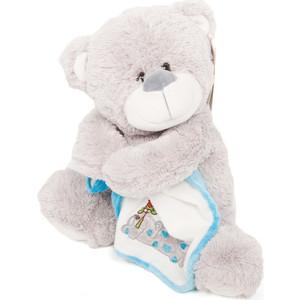Мягкая игрушка Макси Тойз Мишка Серый с платочком 27 см (SUT-010SBX248-27)