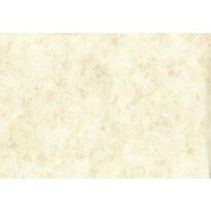 Обои виниловые АС Палитра Ремус 1,06х10м. (70056-22)