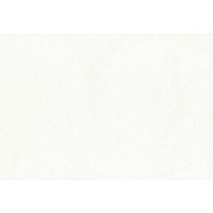 Обои виниловые AS Creation Contzen 4 0,53х10м (95657-4)
