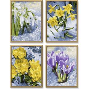 Раскраска Schipper 4 картины Весеннее пробуждение цветов (9340713)