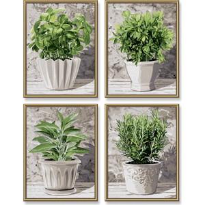 Раскраска Schipper 4 картины Кулинарные травы в горшках (9340687) комнатные цветы в горшках купить в воронеже
