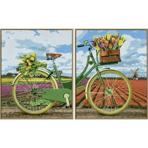 Раскраска Schipper Диптрих Голландский велосипед (9420692)