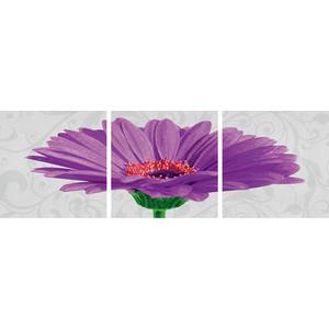 Раскраска Schipper Триптих Гербера фиолетовый (9400683)