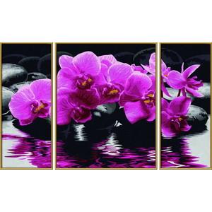 Раскраска Schipper Триптих Орхидеи (9260603)