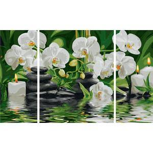 Раскраска Schipper Триптих цветы Wellness-Oase (9260681)