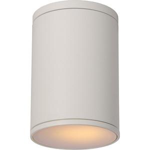Уличный потолочный светильник Lucide 27870/01/31 lucide xentrix 23955 24 31