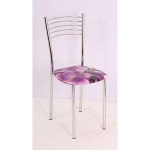 Стул Мебель из Стекла Тюльпан1 ДП56, 2 шт
