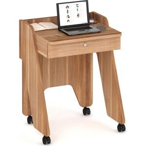 Стол компьютерный ВасКо КС 20-13 нотик - слива