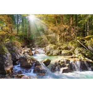 Пазл Кастор Лесной ручей (C-200382)