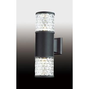 Уличный настенный светильник Odeon 2689/2W