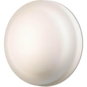 Настенный светильник Odeon 2760/1C