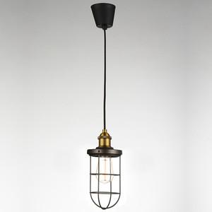 Подвесной светильник Favourite 1589-1P