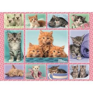 Пазл Ravensburger Забавные котята (10530) ravensburger забавные животные 3х49шт