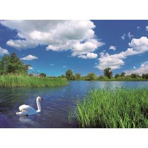 Пазл Ravensburger Лебедь на пруду (14230) от ТЕХПОРТ
