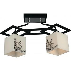 Потолочный светильник Omnilux OML-39107-02 цена