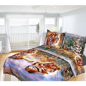 Комплект постельного белья Олеся 1,5 сп, бязь, Тигры, n70