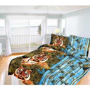 Комплект постельного белья Олеся Семейный, бязь, Бенгальский тигр, n70