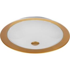 Потолочный светильник Maytoni CL815-PT50-G потолочный светильник maytoni h301 04 g