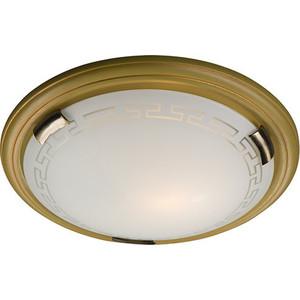 Потолочный светильник Sonex 138