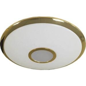 Потолочный светильник Citilux CL70362R светильник с пультом citilux cl70362r led 1w 3000k 4500k 5790080109582