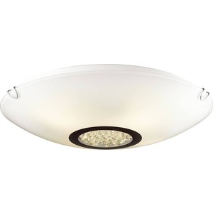 Потолочный светильник Favourite 1694-3C favourite торшер favourite kombi 1704 1f