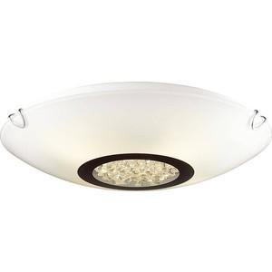 Потолочный светильник Favourite 1694-2C 3eb10047 2c
