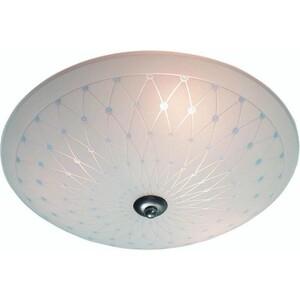 Потолочный светильник MarkSloid 175012-495012 markslojd потолочный светильник markslojd blues 175012 495012