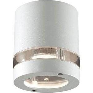 Уличный настенный светильник Ideal Lux PLutone AP1 BIanco