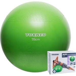 Мяч гимнастический Torneo A-208 (d55 см)