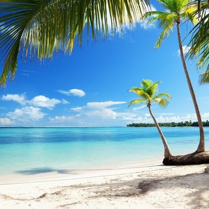 Фотообои W+G Caribbean Sea 8 частей 366x254 см (00954WG)