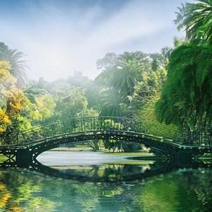 Фотообои W+G Bridge in the Sunlight 8 частей 366 x 254 см (00132WG)