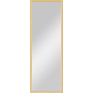 Зеркало в багетной раме поворотное Evoform Definite 48x138 см, сосна 22 мм (BY 0704) зеркало в багетной раме поворотное evoform definite 48x138 см вишня 22 мм by 0705