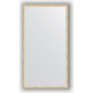 Зеркало в багетной раме поворотное Evoform Definite 60x110 см, состаренное серебро 37 мм (BY 0730) зеркало в багетной раме поворотное evoform definite 54x144 см травленое серебро 59 мм by 0718